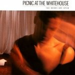 Picnic At The Whitehouse - The Doors Are Open (LP)