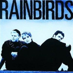 Rainbirds - Rainbirds (LP)