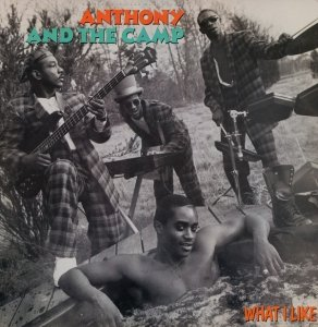 Anthony And The Camp - What I Like (12'')