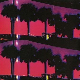 Ducktails - Landscapes (LP)