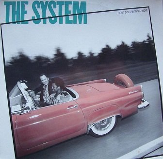The System - Don't Disturb This Groove (LP)