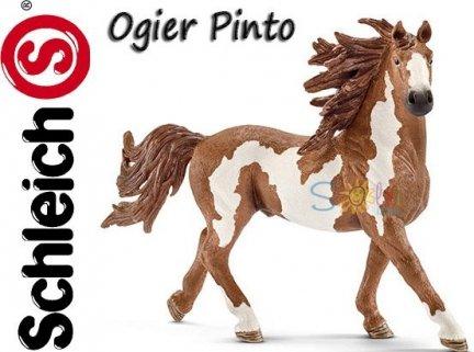 Schleich KOŃ Ogier Pinto KONIE Figurka 13794