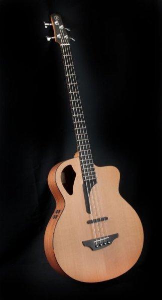 Sklep Muzyczny PASJA Instrumenty Muzyczne - 3d641a34e9d85be29480a21fd3dca1f9