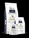 Brit Care Champion Łosoś i Śledź 1kg
