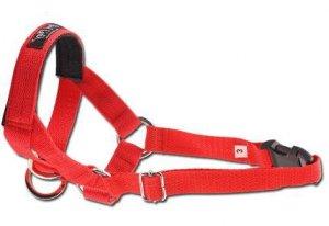 Amiplay Halter XL N5 Rotweiller czerwony