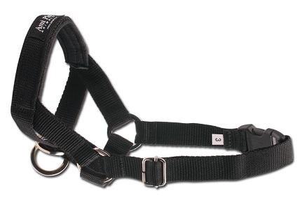 Amiplay Halter M N3/2cm Cocker Spaniel czarny