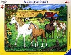 Puzzle ramkowe 46 Konie na padoku