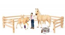 Zestaw opieki medycznej dla koni