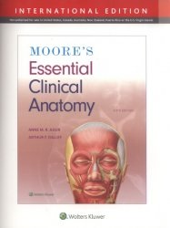 Moore's Essential Clinical Anatomy Sixth edition, International Edition
