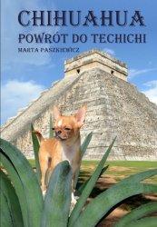 Chihuahua powrót do techichi