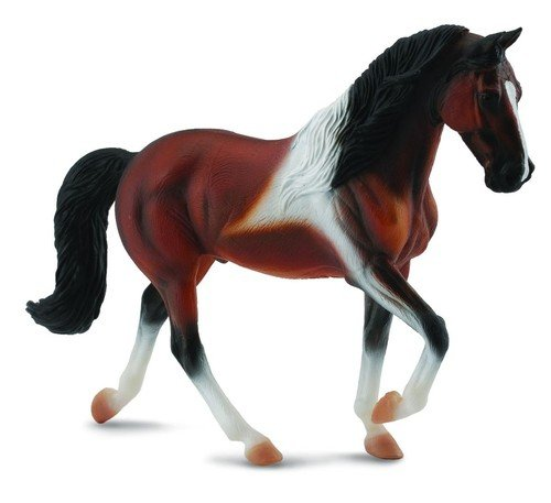 Klacz rasy Stallion Bay Pinto XL