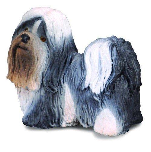 Pies rasy Shih Tzu