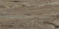 Siena Grigia 31x62