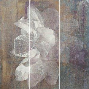 Manteia Colour Panel A 60x60 (3x20x60)