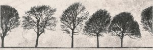 Willow Sky Insero Tree 29x89