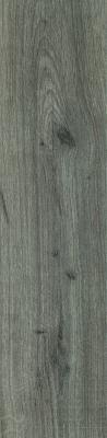 Stargres Dublin Grey 15,5x62