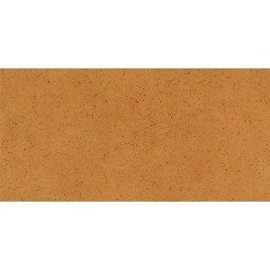 PARADYZ aquarius beige podstopnica 14,8x30 g1