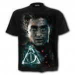 Harry Potter - Deathly Hallows - Spiral