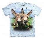 Donkey Daisy - The Mountain Junior