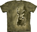 Lone Buck -  The Mountain