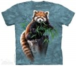 Bamboo Red Panda - The Mountain