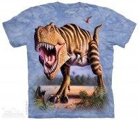 Striped Rex - The Mountain