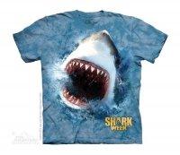 Shark Feed - The Mountain Dziecięca
