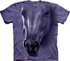 Horse Head - The Mountain