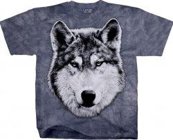 Wolf Glare - Liquid Blue