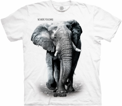 Elephant No More Poaching White Protect - The Mountain