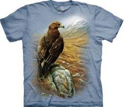 European Golden Eagle - The Mountain