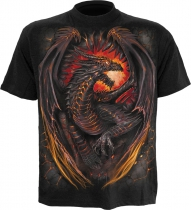 Dragon Furnace - Spiral