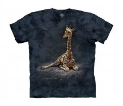 Giraffe Calf - Junior The Mountain