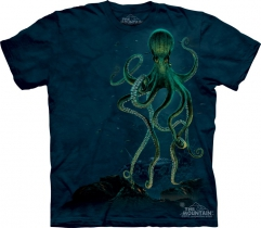 Octopus -  The Mountain