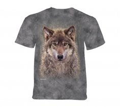 Grey Wolf Forest - The Mountain Junior