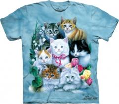 Kittens -  The Mountain