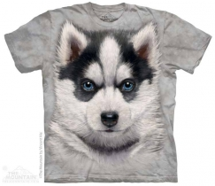 Siberian Husky Puppy - The Mountain