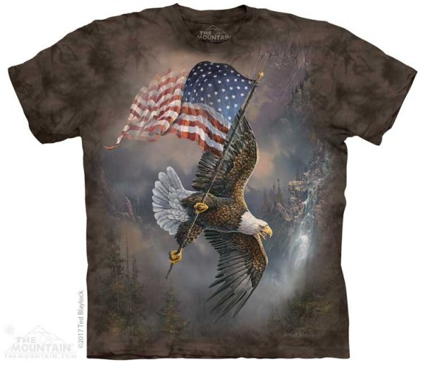 Flag-Bearing Eagle - The Mountain
