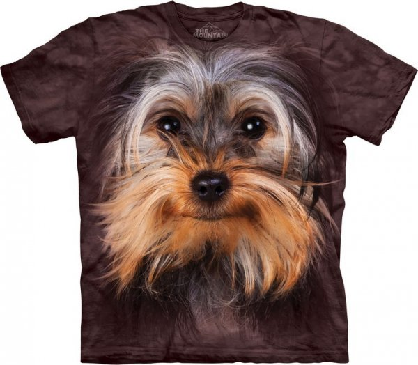 Yorkshire Terrier Face -  The Mountain