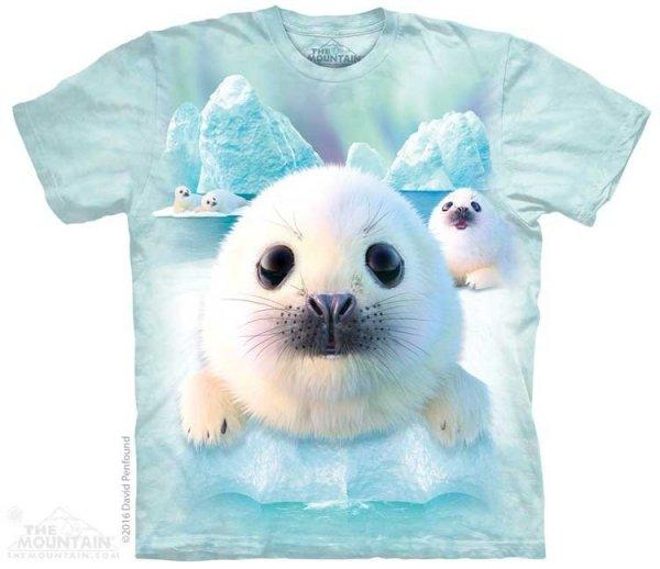 Sealpups - The Mountain