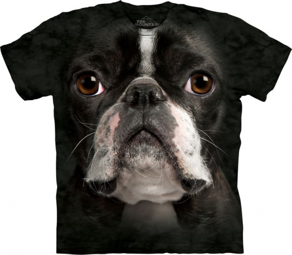 Boston Terrier Face - The Mountain
