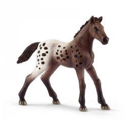 Źrebię rasy Appaloosa Figurka Konia Schleich 13862