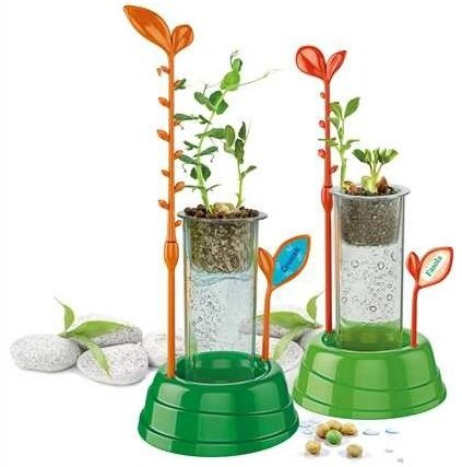 naukowa zabawa eksperymenty szklarnia hodowla roślin 8005125505166