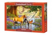 Puzzle HORSES BY THE STREAM 1000 elementów - Castorland