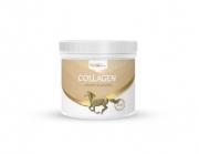 Kolagen 300g - HorseLine PRO