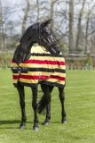 Derka osuszająca RAMBO Deluxe Fleece - HORSEWARE - witney gold