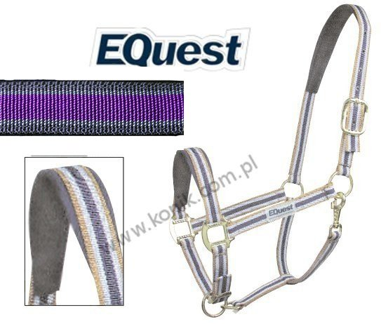 Kantar DUAL PLUS violet - EQUEST