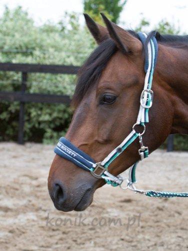 Kantar + uwiąz STRIPE SU14 - HARRY'S HORSE