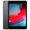 Apple iPad mini 5 256GB Wi-Fi Space Gray (2019)