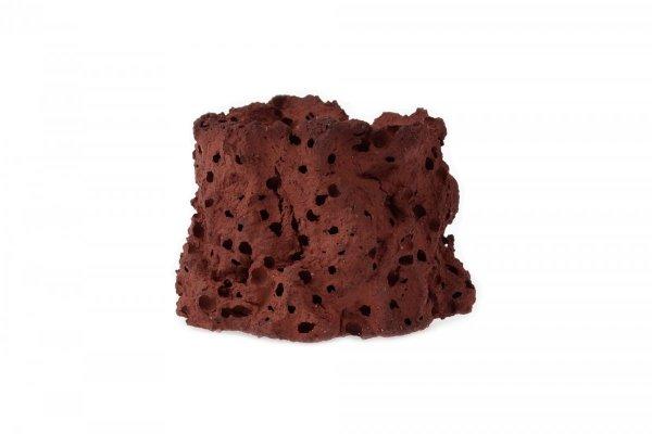 Nabąblacz Krewetkowy Czerwony Wulkan